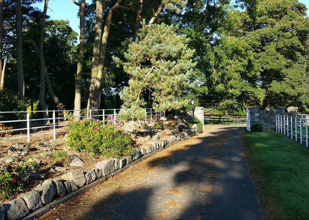 10-Boyne-View-back-towards-entrance-to-house-grounds