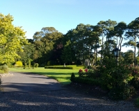 12-Boyne-View-gardens-at-side-of-house-and-lane