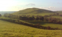 Beautiful day at Loughcrew