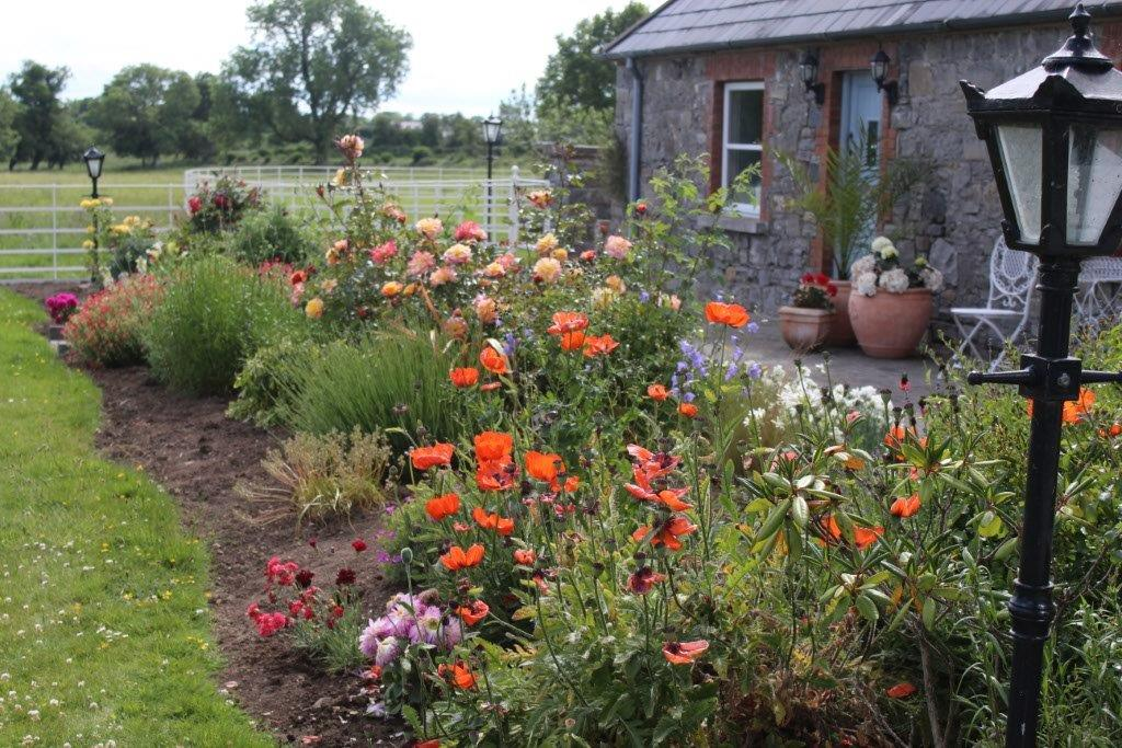 Boyne View Bed and Breakfast Exterior Flower Beds 2